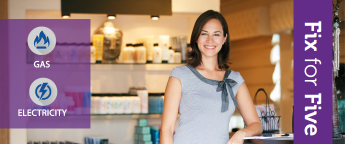 Fix and Forget your business energy for up to 5 years
